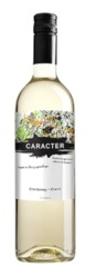 Вино Santa Ana Caracter Chardonnay-Chenin, 0,75 л.